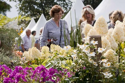Visitors enjoying the Wisley Flower Show