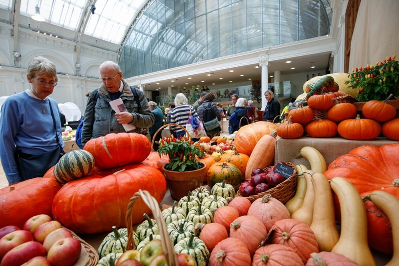 Couple look at vegetable stand at RHS Harvest Festival