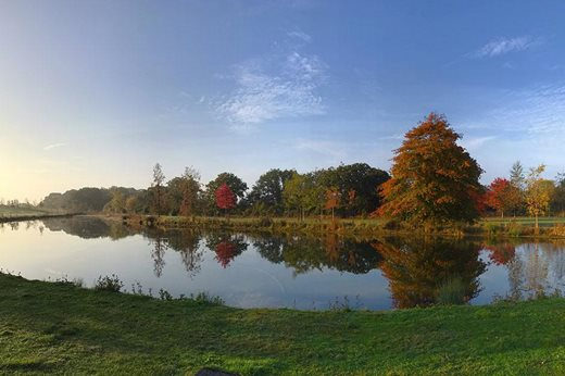 Lake view in Autumn at RHS Garden Hyde Hall