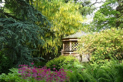 The summerhouse surrounded by spring colour