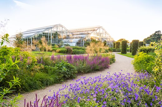 The Glasshouse at RHS Garden Wisley showcases ornamental plants