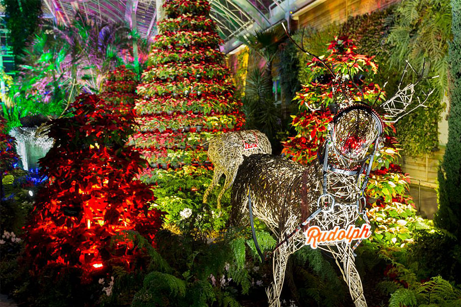 Christmas at the RHS Gardens