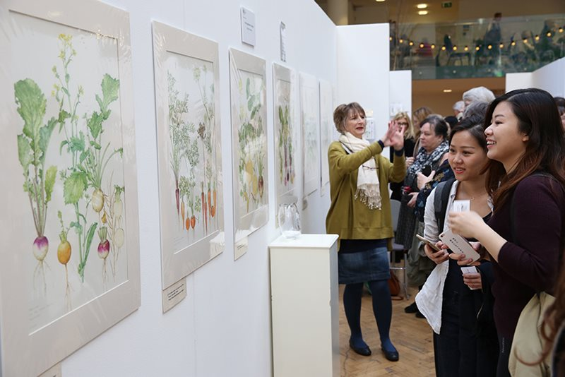 Visitors looking at botanical art pictures