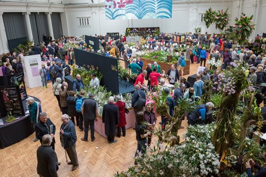 Crowds at the London Orchid Show and Plant Fair